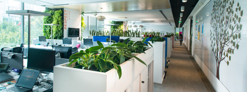 Read more about the article 5 Simple Steps for a Green Office
