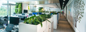 5 Simple Steps for a Green Office